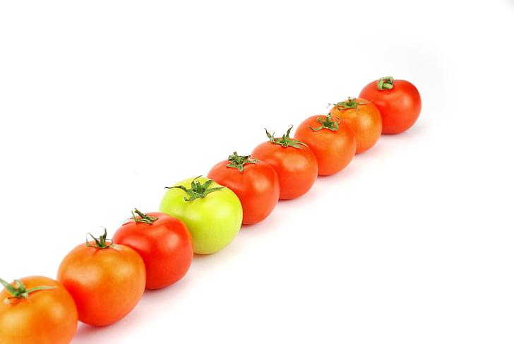 que, tomat, toidu, taimne, roheline, punane, valgel taustal