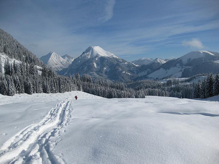 tuyết, núi, mùa đông, wintry, đi du lịch