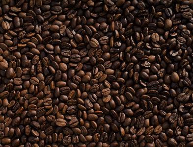 Κλείστε, φωτογραφία, καφέ, φασόλια, καβουρδισμένο καφέ bean, καφέ - ποτό, εσπρέσο