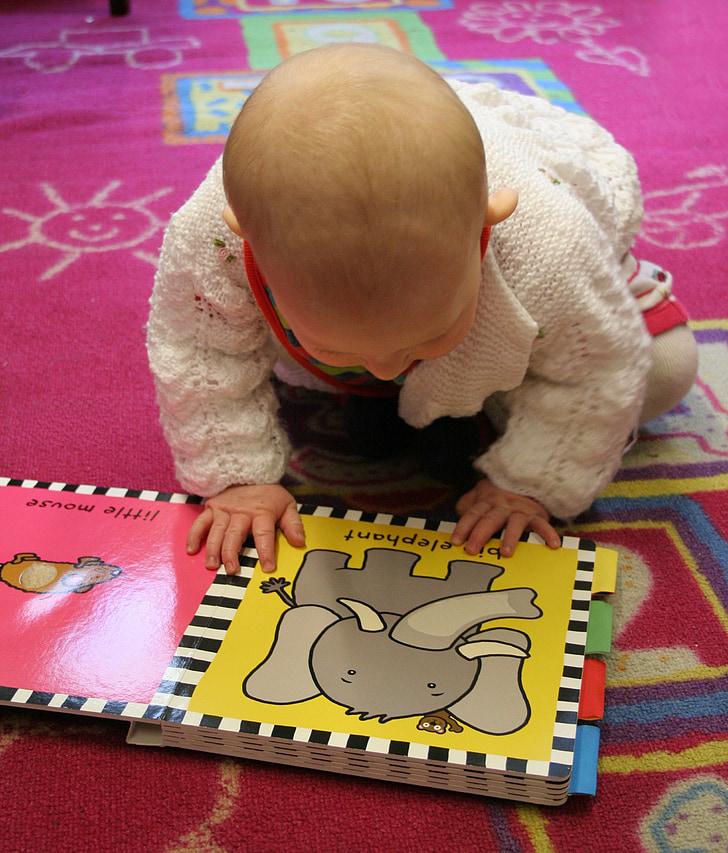 l'aprenentatge, llibre, nen, nen, lectura, nadó, valent