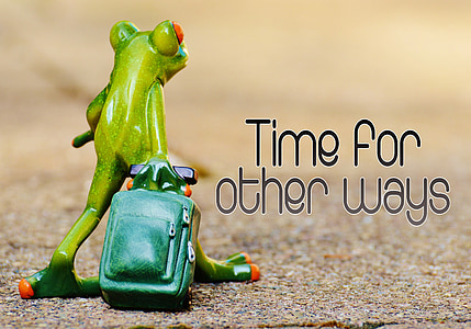 frog, time for other ways, farewell, travel, luggage, holdall, go away