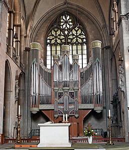 Miunsteris, Dom, pagrindines organų sistemų, tarp eilių, erdvės užpildymas, altorius, Vyskupas