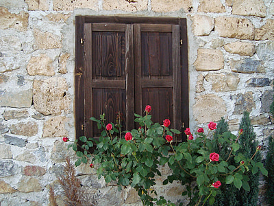 wall, window, roses, wood - Material, door, architecture, old