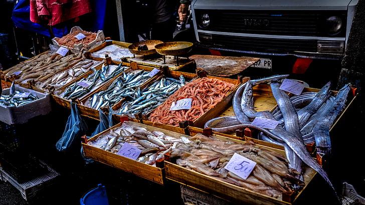 Рыба, питание, рынок, Продажа, морепродукты, киоск, Улица