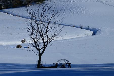 paisatge, paisatge d'hivern, neu, arbre, matèriel agrícola, natura, blanc