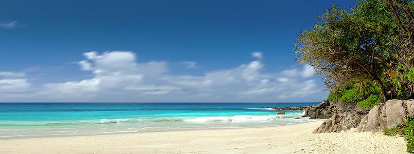 Сейшельские острова, мне?, океан, праздник, Отдых, Купание, деревья