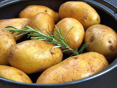 patates, romaní, graella de patates