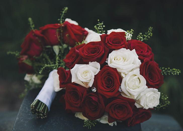 Rosas, ramo de la, flores, ramo de flores, boda, ramo de flores, matrimonio