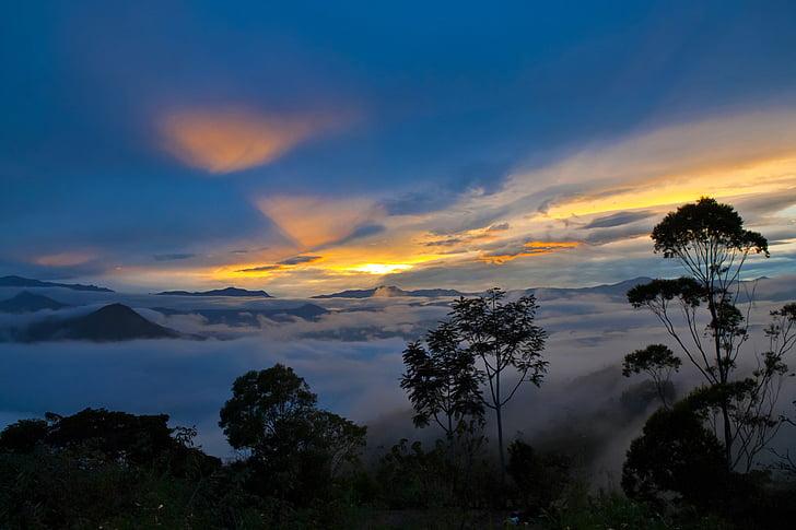 moln, dimma, dimmigt, bergen, natursköna, hav av moln, Sky