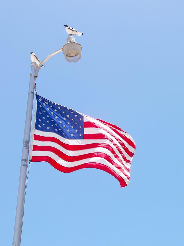 Spojené státy americké, vlajka, Americká, Národní, vítr, Amerika, venkovní