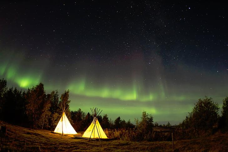 kempingas, naktį, žvaigždės, miškai, miško, medžiai, Šiaurės