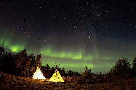 Camping, noapte, stele, pădure, pădure, copaci, Nord