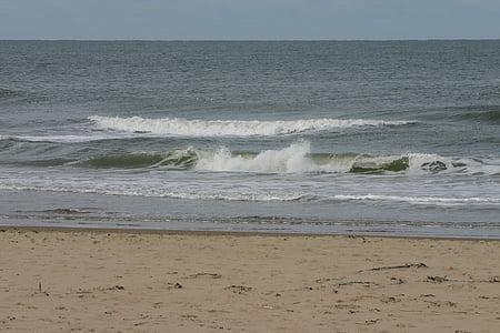 Texel, Island, Beach, Sea, Sand, Ocean, vesi
