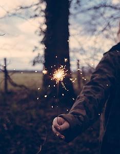 espurna, persones, foc, llum, arbres, natura, dona