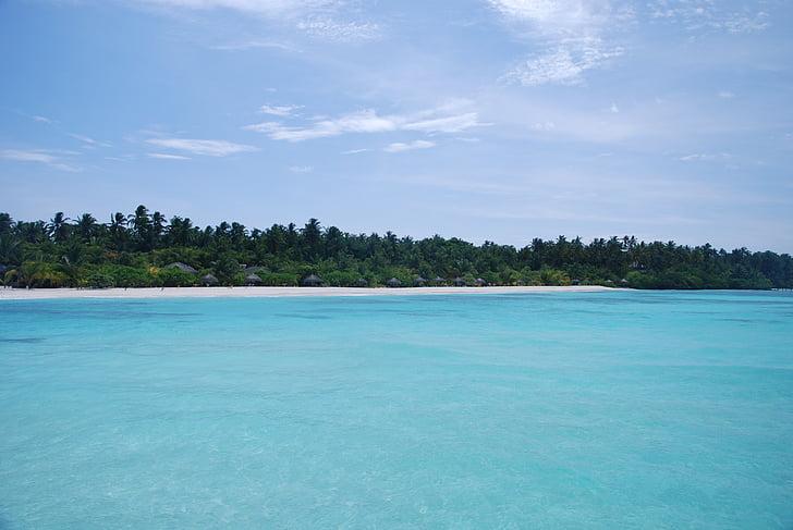 the sea, maldives, views, beach, white sands