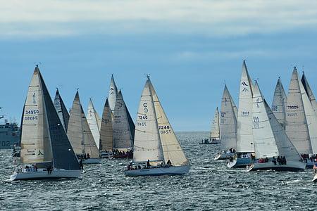 Swiftsure, kappsegling, segling, båtar, Yacht, havet, segel