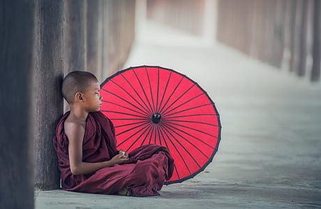 พระ, umbrella, eat, asia, burma, faith, boy