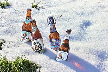 Pivo boca, ohlađeno, Clip zatvaranje, pivo, boca, snijeg, alkohol