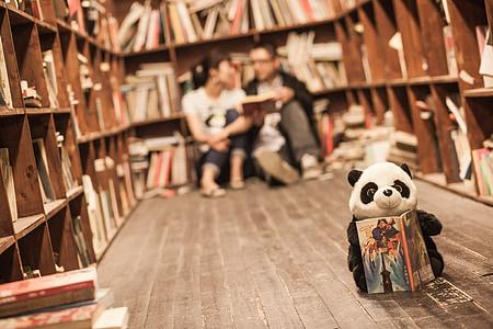 Biblioteka, pary, Panda, książki, Regał, Edukacja, Student