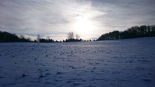 wintry, snow pictures, winter images, winter, snow, winter picture, nature