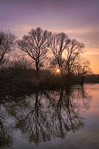 river, water, lip, trees, sunset, atmospheric, flow