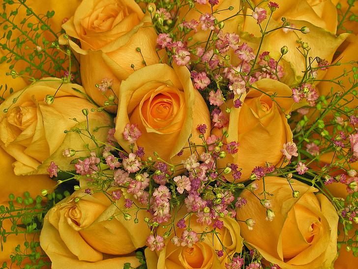 kimp, sünnipäeva tervitus, roosid, lilled, kollane, lillepood, Õnnitlen