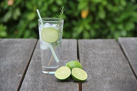 Gin, tonique, cocktail, alcool, boisson, citron vert, citron