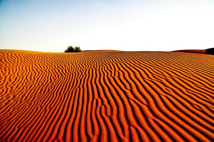 dykuma, kraštovaizdžio, Gamta, dykumos kraštovaizdis, kelionės, smėlio, turizmo