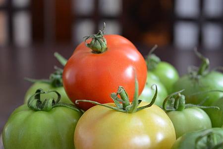 tomàquet, fruites i verdures, fresc, vegetals, aliments, frescor, Orgànica