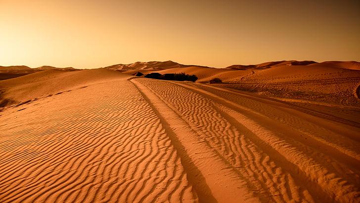 pustinja, Maroko, pješčane dine, suha, krajolik