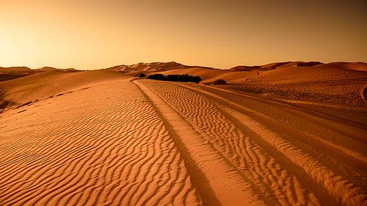 poušť, Maroko, písečné duny, suché, krajina