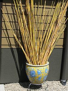 jardin japonais, paysage, bambou, Zen