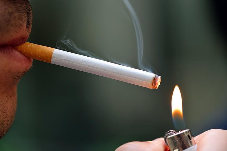 home, encenen, cigarret, foc, fum, Cigarreta, fum, encenedor