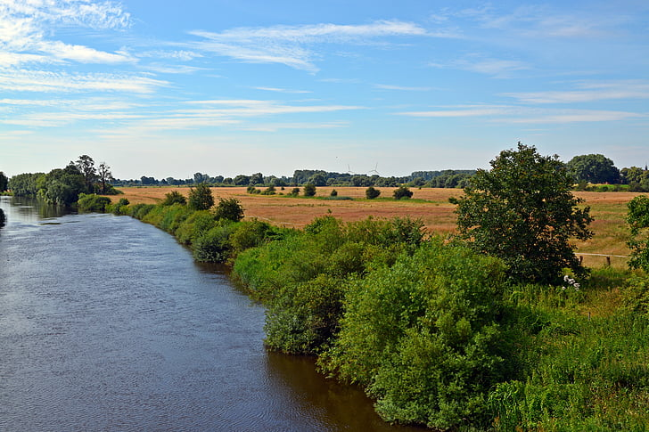river, landscape, nature, cornfield, sky, tree, summer