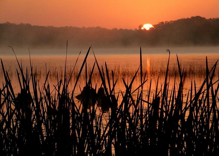 soluppgång, naturen, morgon, solnedgång, siluett, skymning, sjön
