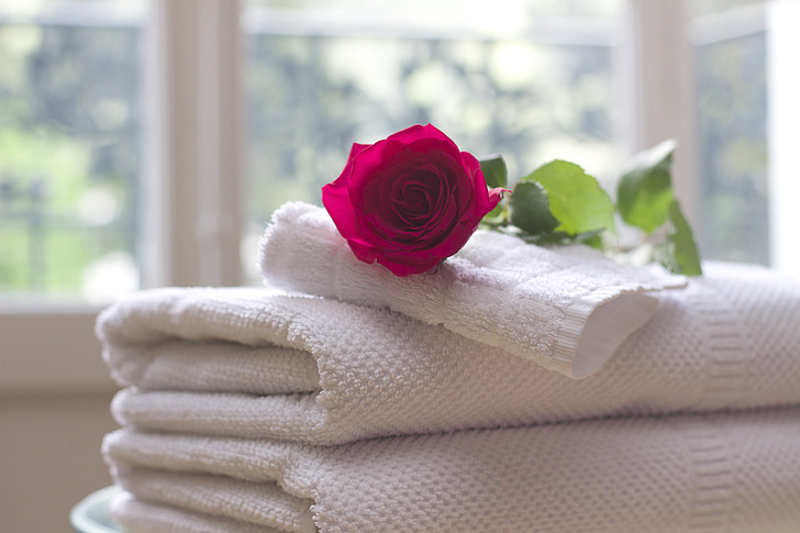 towel, rose, clean, care, salon, spa, white