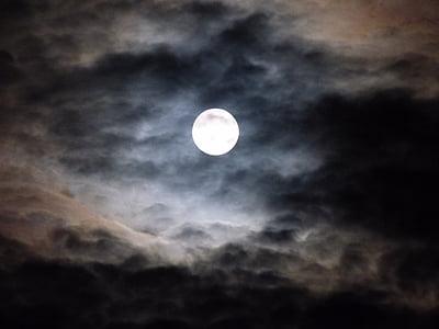 満月, 雲, 暗闇の中, 空, 夜, 月, 月光