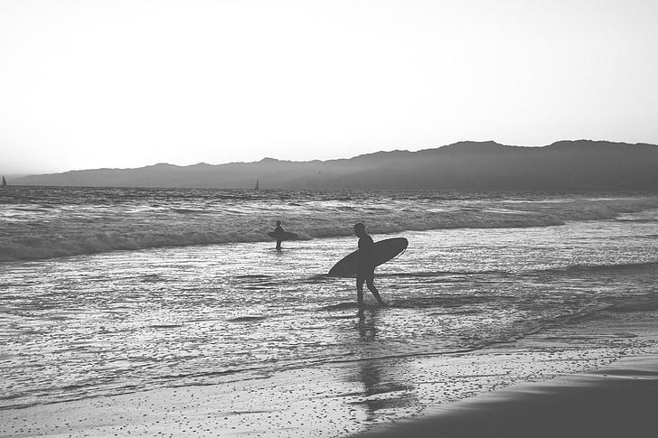 surfing, Beach, surfbræt, Sillhouette, surfer, folk, Dusk