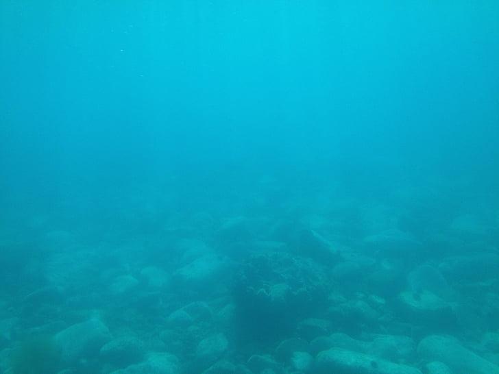 sota l'aigua, oceà, nedar, bussejadors, Mar, Natació, l'aigua