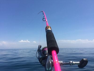 sea, sea fishing, fish, fishing