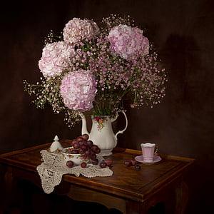 morta, flors, Hortènsia, RAM, floració, flora, plantes
