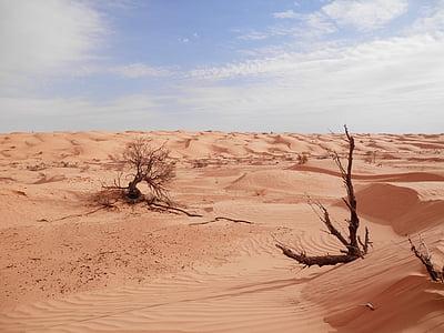 Sàhara, desert de, Tunísia