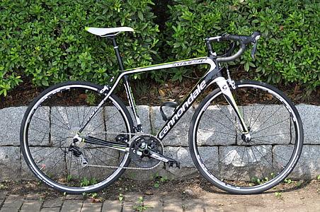 Cannondale, bicikala, bicikl, cestovni bicikl, utrka, triatlon, ugljika