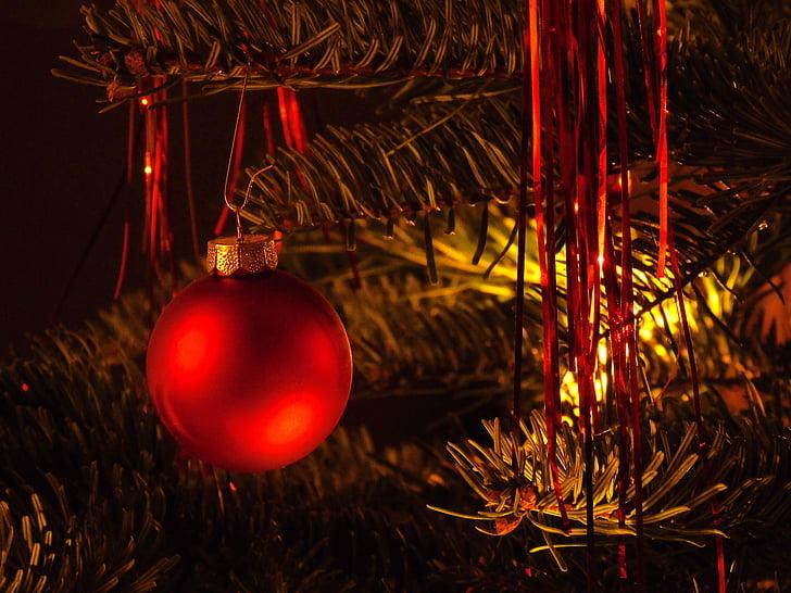 คริสมาสต์, คริสมาสต์ของเด็กเล่น, ตกแต่งคริสต์มาส, วิญญาณคริสต์มาส, คริสมาสต์เด่น, สุขสันต์วันคริสต์มาส, เครื่องประดับคริสต์มาส