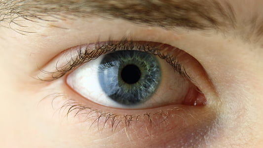 eye, face, human, green, blue, portrait, man
