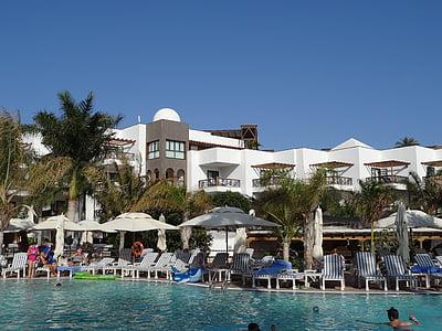 Yüzme Havuzu, Resort, otel, Havuzu, su, Yaz, tatil