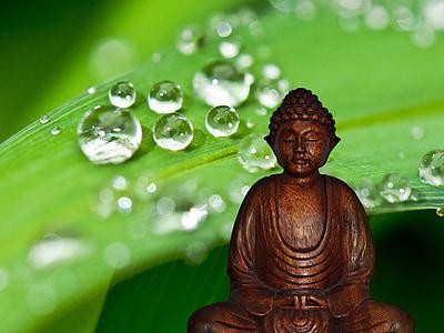 Bouddha, méditation, Figure, reste, bouddhisme, déité, spirituelle