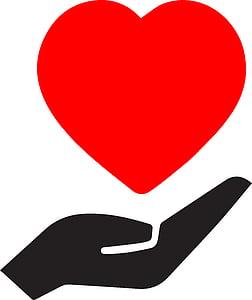 sydän kämmenelle ja, sydän, käsi, punainen, käsi