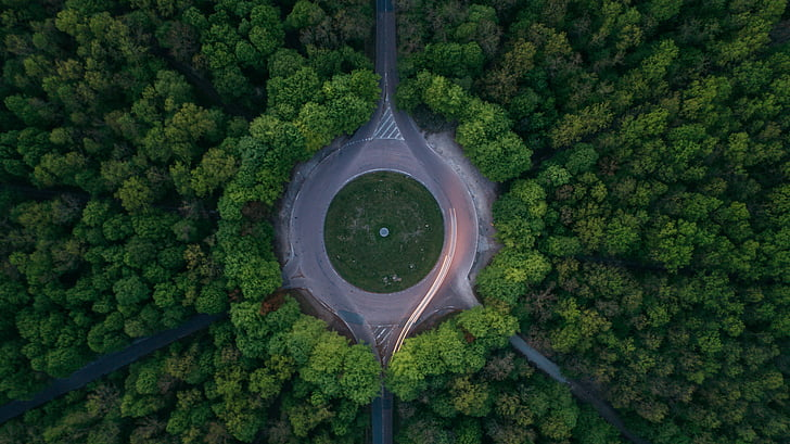 green, trees, plant, nature, forest, aerial, view