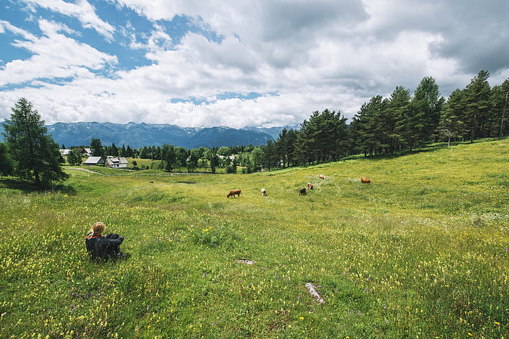 clouds, grassland, landscape, mountain range, mountains, nature, person